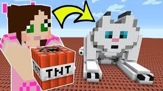 HOW MUCH TNT TO EXPLODE CLOUD THE CAT?!?
