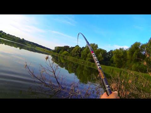 Видео Супер ловля карпа на удочку с боковым кивком с берега
