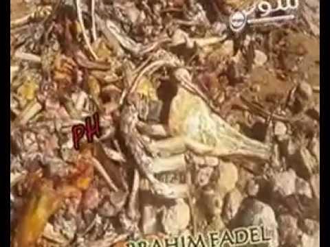 أكادير: بالفيديو …العثور على كمية كبيرة من بقايا عظام حمير بتيكوين