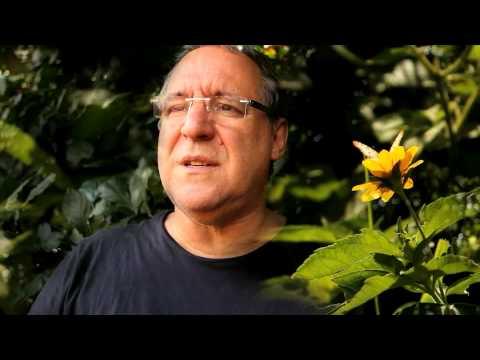I Seminário de Ecologia Humana - Entrevista a Feliciano De Mira