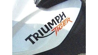 Triumph Tiger 800 Teste Na Estrada Pela Primeira Vez