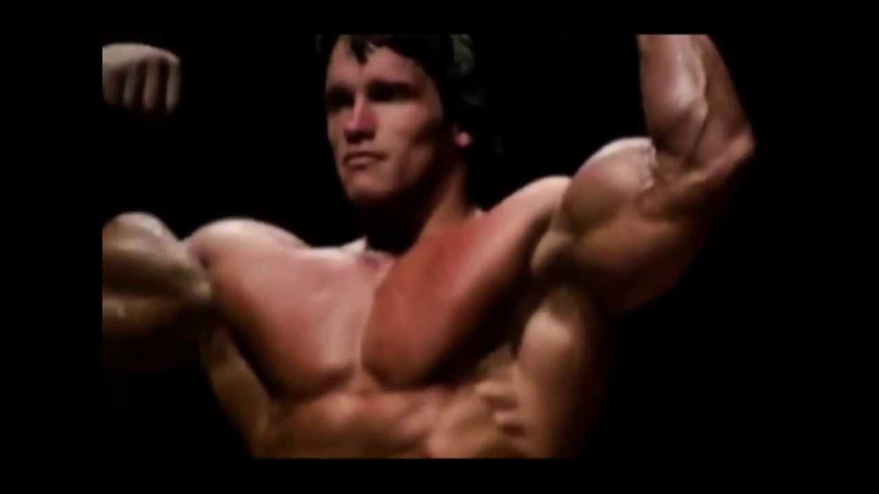 muscle dysmorphia essay