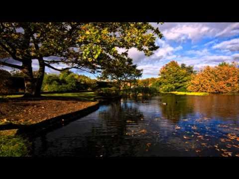 Risley Moss Country Park Stockton Heath Cheshire