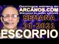 Video Horóscopo Semanal ESCORPIO  del 25 al 31 Julio 2021 (Semana 2021-31) (Lectura del Tarot)