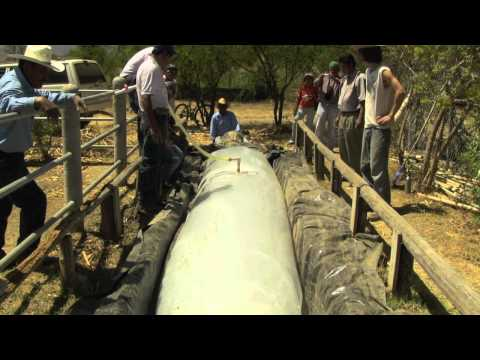Como Construir un Biodigestor de Bajo Costo // How to Build a Low-Cost Biodigester