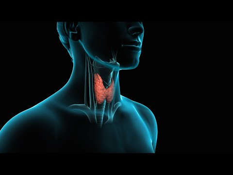 Thyroid Surgery (Thyroidectomy)
