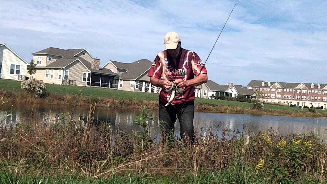Tips and tactics for fall bass fishing jigs and swimbaits for Fall bass fishing tips