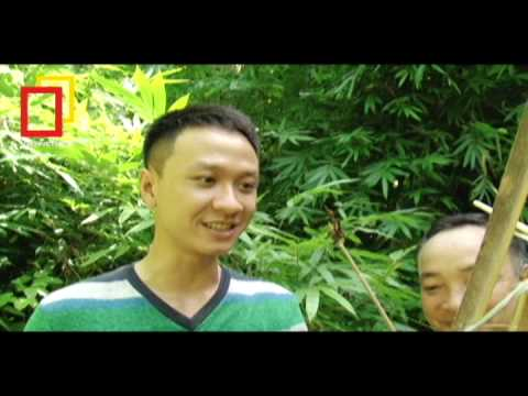 SVN BDL  Lên rừng học cách đặt bẫy và bắn nỏ