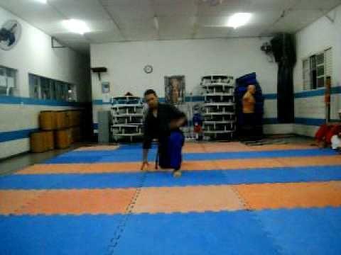 Hapkido Associação Hwarang Ryu  -Apresentação de Napop (Quedas e Rolamentos) - Faixa Branca