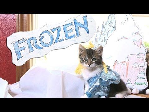 Disneys Frozen Cute Kitten Version