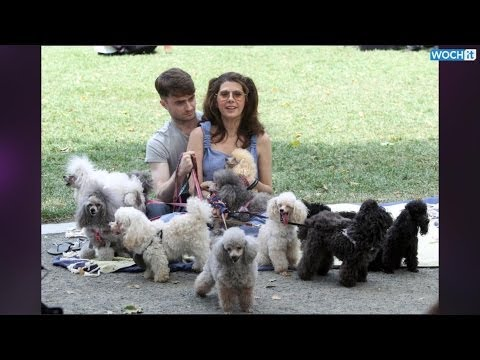 Daniel Radcliffe Is Smoking And Walking Many Dogs