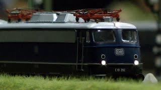 Modelleisenbahn H0 mit Tierpark vom Treinen Club Midden Nederland