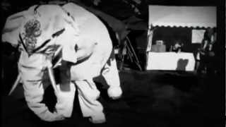 The Jigsaw Seen Baby Elephant Walk view on youtube.com tube online.