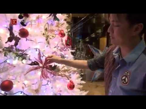 Khung Cảnh Tuyệt Đẹp Đón Lễ Giáng Sinh Tại Nhà Của Ca Sĩ Đàm Vĩnh Hưng
