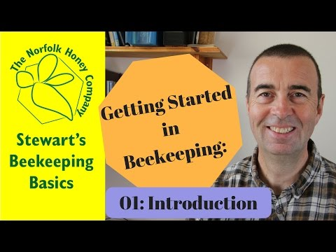 Getting Started in Beekeeping 01 Introduction - Beekeeping Basics - The Norfolk Honey Co.