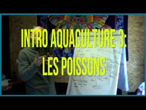 Introduction à l'Aquaculture avec la Permaculture 3: Les Poissons