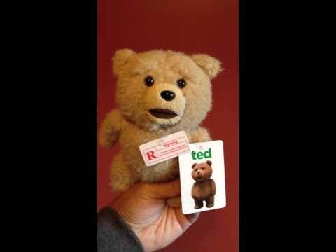 Ted 8 inch R-Rated Talking Teddy Bear