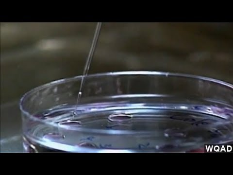 Mom, Dad and Mom? FDA Discusses 'Three-Parent IVF'