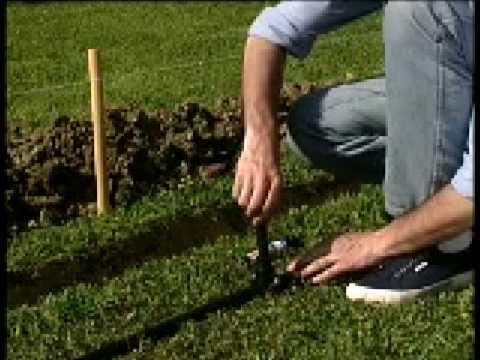 Giardinaggio come realizzare un impianto di irrigazione for Impianto di irrigazione giardino