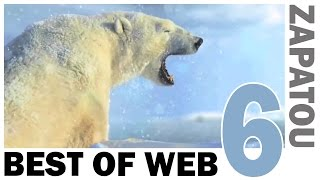 Best of Web 6 - HD - Zapatou