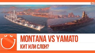 Montana vs Yamato Кит или слон?