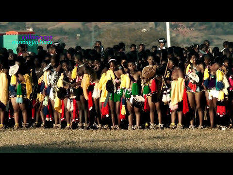 Swaziland Princess participates the Reed Dance Ceremony  (RD #15)