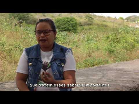 O saber é sagrado: Conhecimento e partilha entre mulheres Xukuru