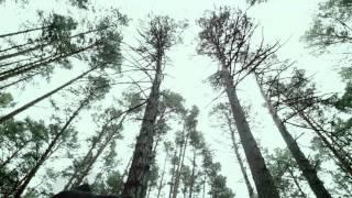 За Полк ft. Чаян Фамали - Моими глазами