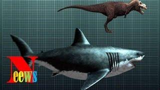 Top 10 loài động vật tuyệt chủng thời cổ đại có hy vọng sống lại