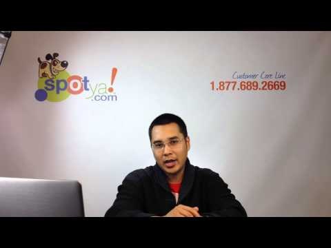Online Cash Advance Fast Payoff Is A Good Money Management Policy
