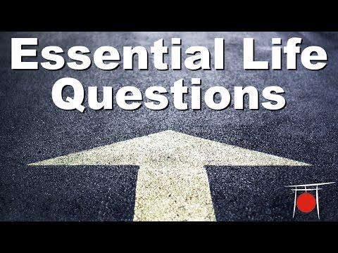 Essential Life Questions - Rokas Vlog