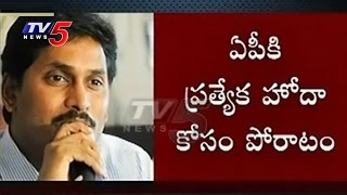 YSRCP to raise AP special status issue in Parliament