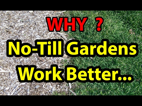 WHY No Till Gardening Works Best with Living Roots, Back To Eden garden method 101 with wood chips