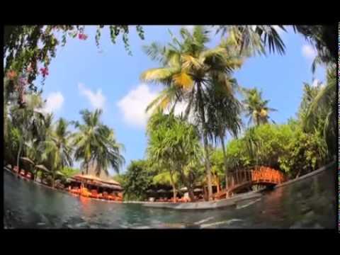 Самые экзотические профессии в путешествии Орла и Решки на Мальдивах .