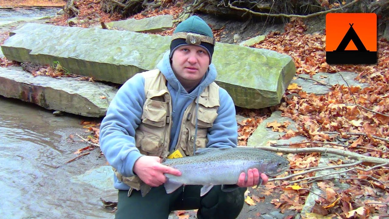 Steelhead fishing at erie pa november 2013 youtube for Steelhead fishing pa