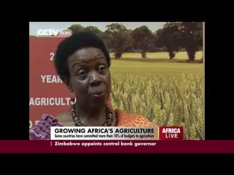 Growing Africa's Agriculture