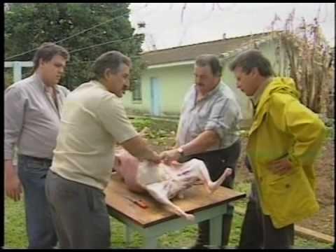 Globo Rural - Michuim do Delby Machado/Canoinhas Capital da Erva-mate