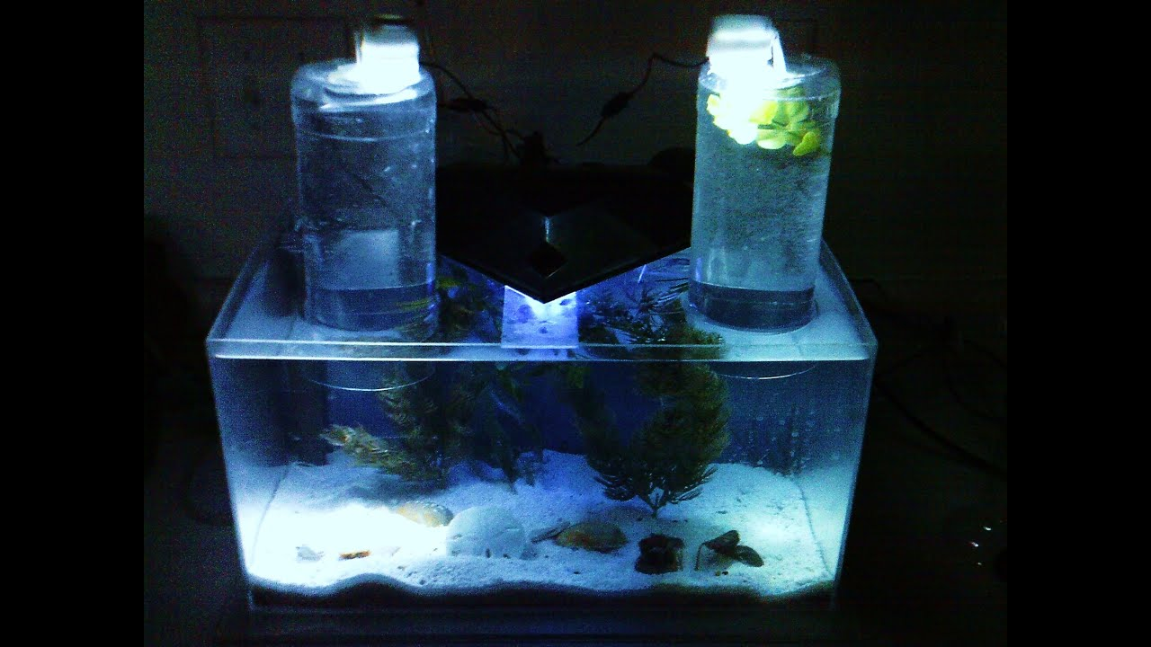 Nano acrylic saltwater tank diy with how it was made youtube for Acrylic fish tank diy