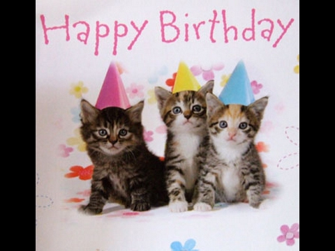 Cat saying Happy Birthday to you | Happy Birthday Song for kids