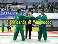 Intro: World Yongmoodo Federation