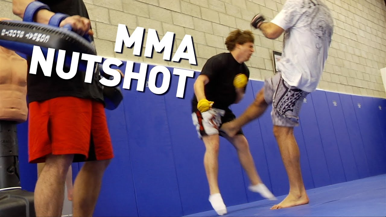 Horse Takes MMA Kick To The Nuts - YouTube