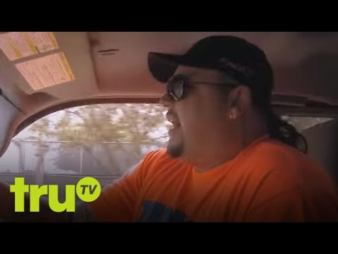 Robbie South Beach Tow Height South Beach Tow Dognapped