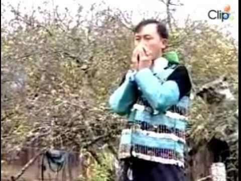 Hmoob Nyab Laj Xyoo Tshiab - Tết Của Người H'Mông