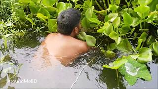 Fishing In Bamboo / Catching Fish By Trapping / Very Old Traditional Way Of Fishing In My Village
