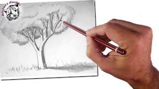 Cómo enseñar a dibujar a niños: Un árbol realista