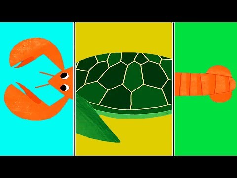 Animals Match Up - Children Play & Learn The Names Of Sea Animals - Fun Educational Baby Games
