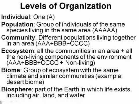 Ecology Levels and Population