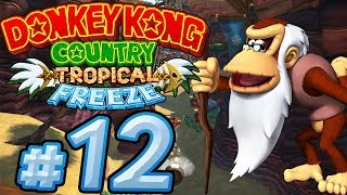 Let's Play Donkey Kong Country Tropical Freeze - Part 12 - Secret Exits an die Macht!