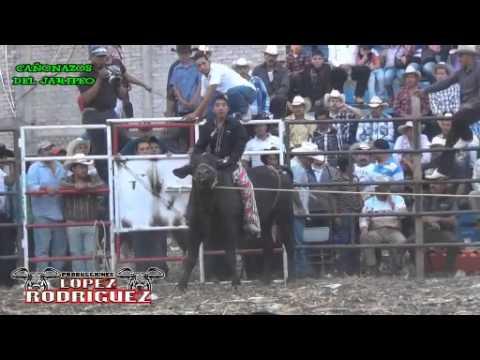 Torneo Regional De Toros De Reparo En La Quemada Gto. Campeón Cien Fuegos De La Maldita De Cortazar.