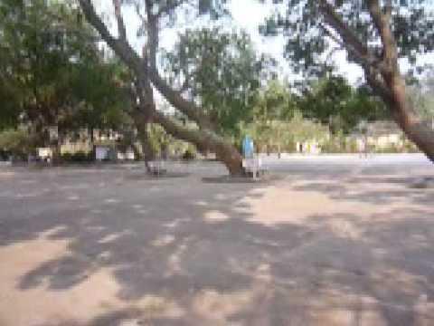 Trường THPT Yên Dũng 1 - Bắc Giang